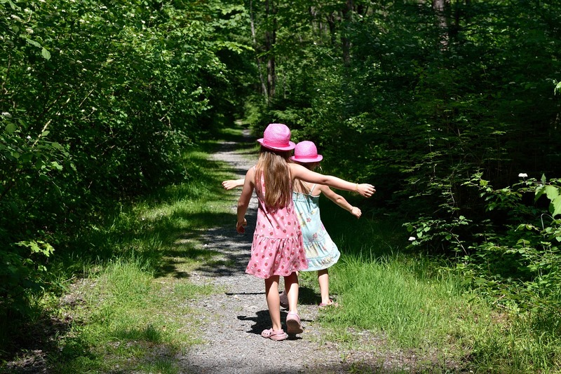 Strawberries  - Chasing the Joy - Lessons From a 3 Year Old