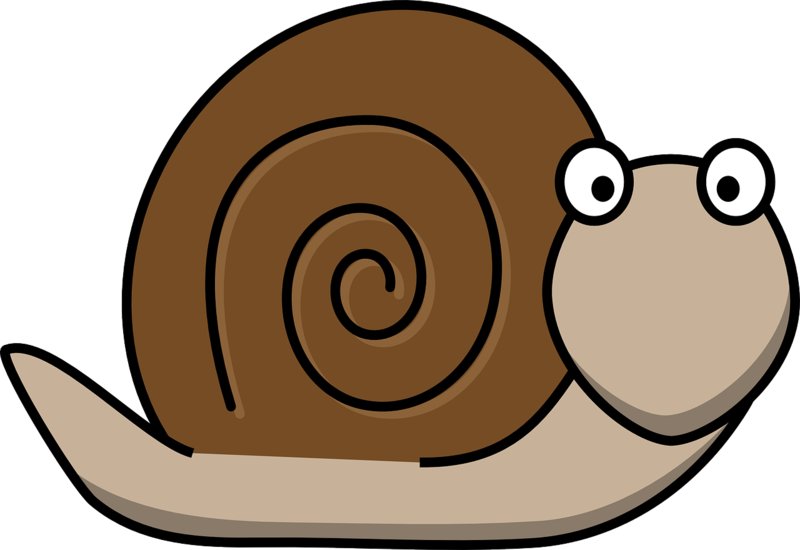Snail  - Ten Tips for Stressing less with a Pre-schooler